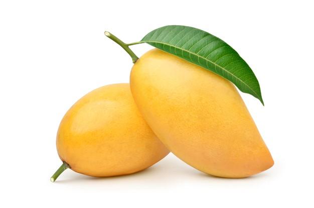 Juicy Banganapalli Mango